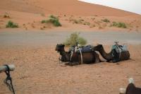 Maroko_152